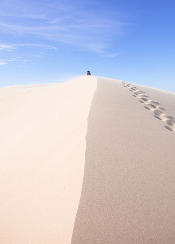 Oregon Dunes National Recreation Area, Oregon, USA