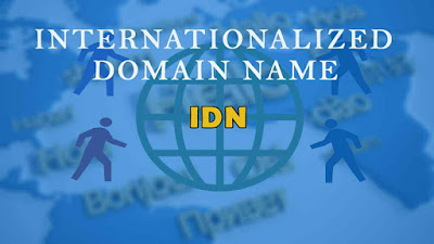 what is IDN, IDN domains, chinese domains, super domains, earn money with domains, domain name tips and tricks, domain trade, domain game, domain market trands,