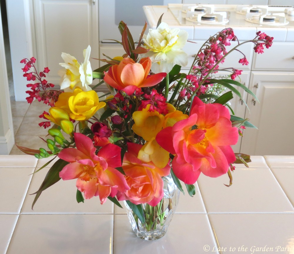 Late to the Garden Party: In a Vase on Monday: Spring Stampede
