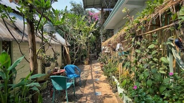 Blue Indigo Garden