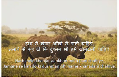 Attitude Shayari, Attitude Shayari in Hindi,
