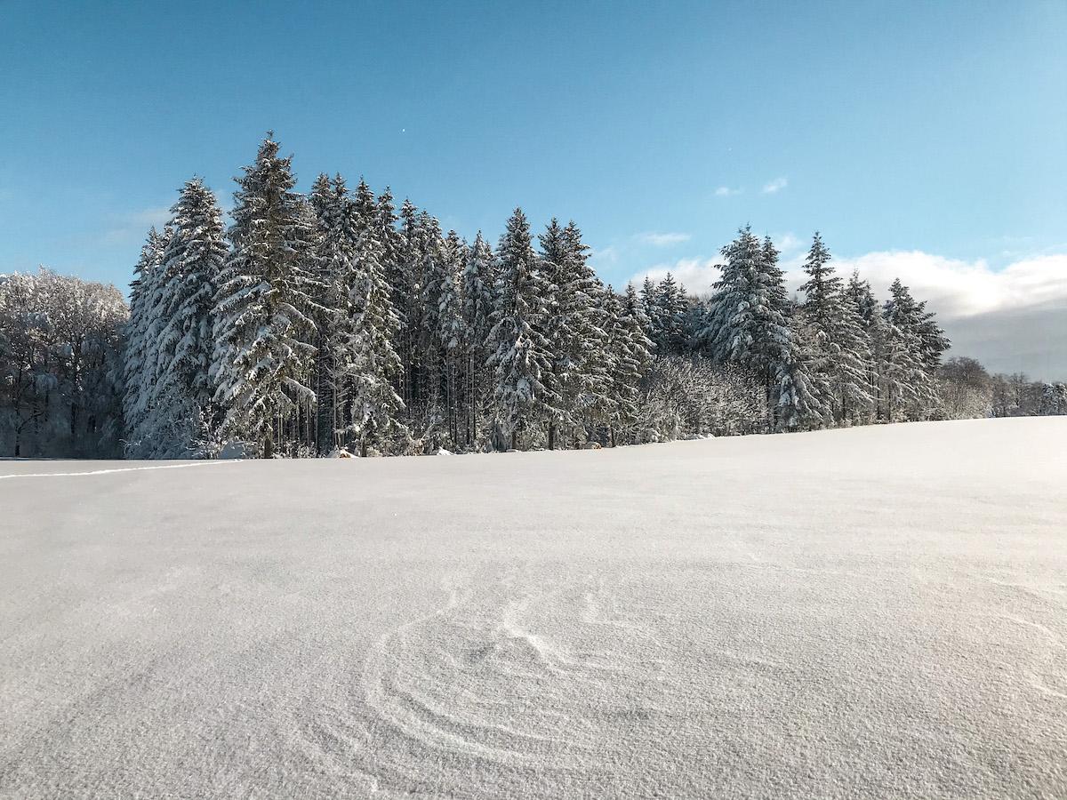Winterwanderungen Nordschwarzwald schwäbischen Alb Wandern in Baden Württemberg HochAlbPfad Hossingen Albstadt Tiefschnee