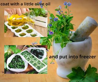 freeze herbs