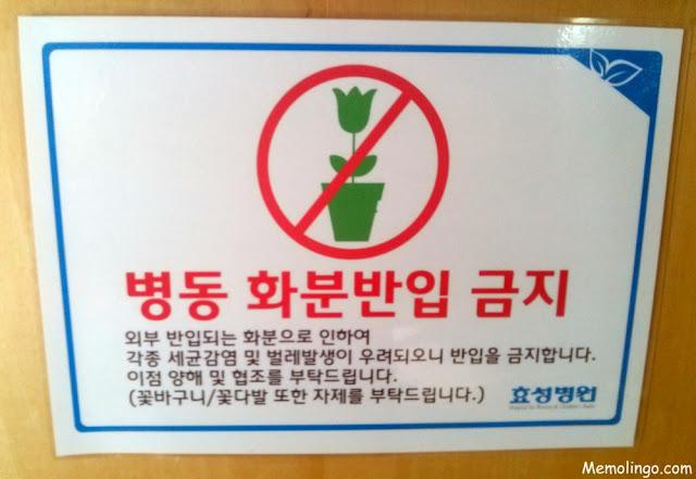 Cartel coreano que prohíbe entrar a un hospital con plantas y flores