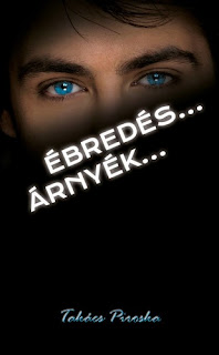 Takacs Piroska - ebredes... arnyek... - Mano kronikak #ajanlo