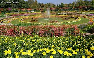 mugal-garden-will-open-from-5th-fabruary
