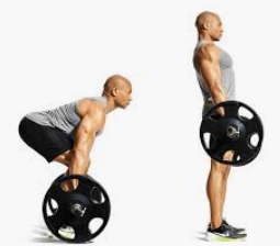 4 Program Latihan Fitnes Untuk Badan Kurus