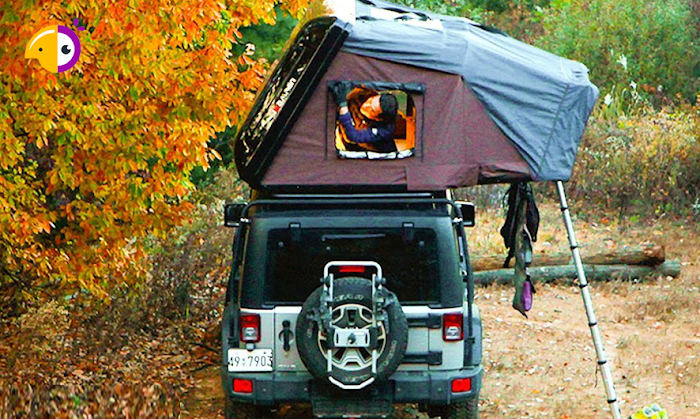 Top 10 Essential Gear You Need to Start Car Camping