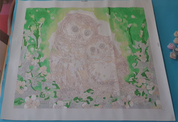 The first stages of a print by numbers canvas of owls completed