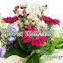 29 Νοεμβρίου.🌹🌹🌹 Σήμερα γιορτάζουν :Φαίδρα, Φαιδρούλα, Φαιδρίνα Φιλούμενος, Φίλος, Φιλουμένη, Φιλομίνα, Φιλομίλα, Φιλομίλη, Φίλη