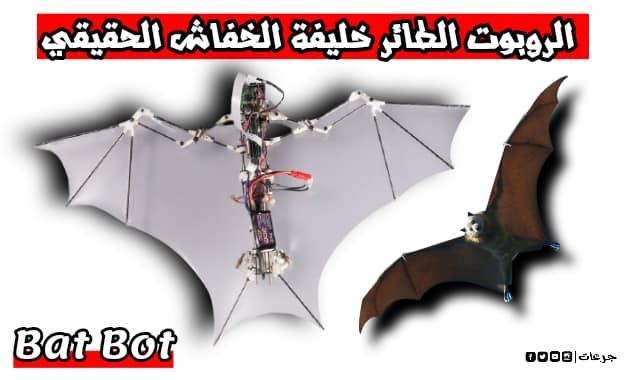 الروبوت  bat bot