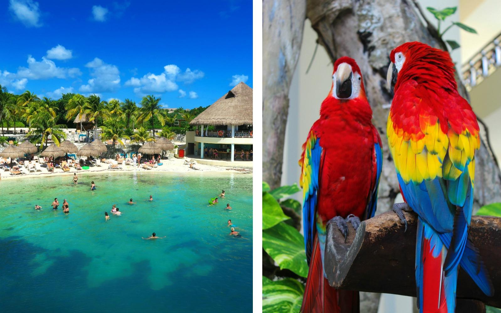 Occidental Grand Hotel Resort Mexico
