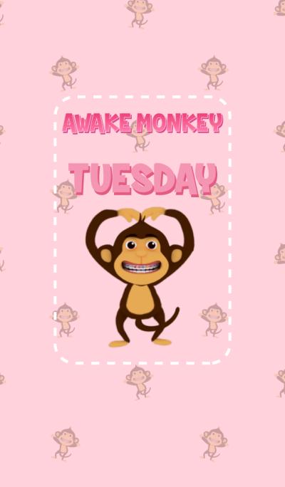 Awake Monkey Tuesday