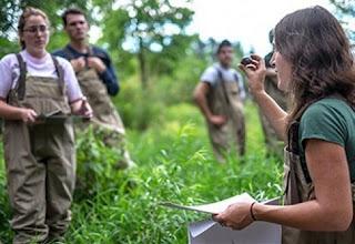 Ηλεία: Οι δικαιούχοι του προγράμματος «Εγκατάσταση Νέων Γεωργών»