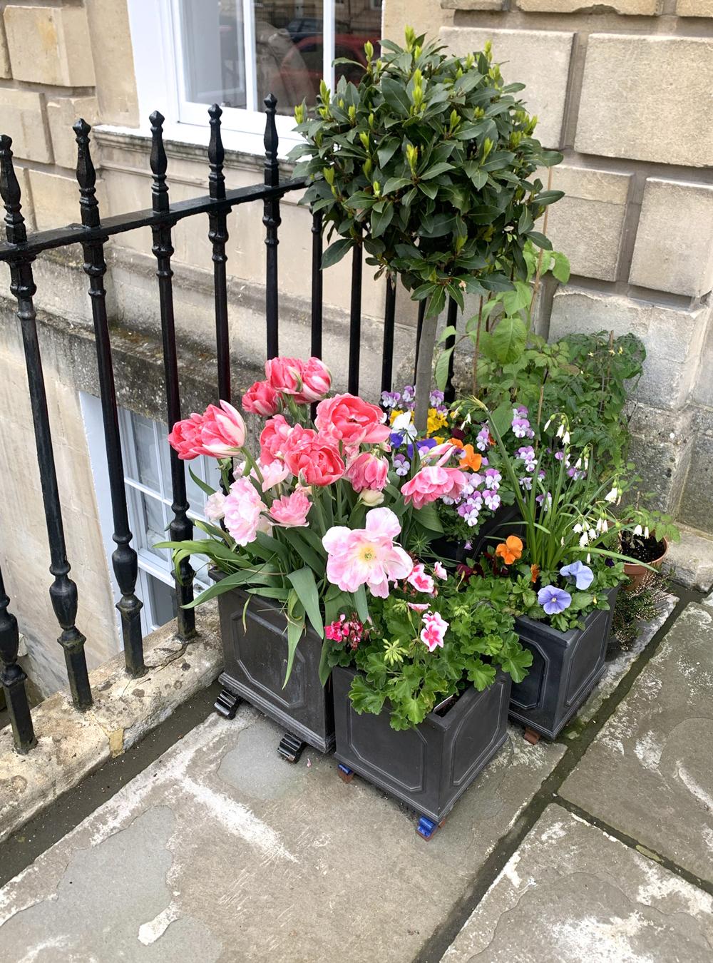 Doorstep flowers in Bath - Emma Louise Layla, UK travel & lifestyle blog