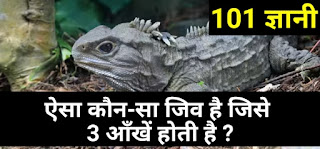 Gk in hindi, latest gk current affairs, today's gk, ias interview questions, vvi gk