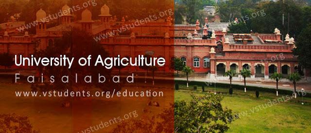University%2Bof%2BAgriculture%252C%2BFaisalabad