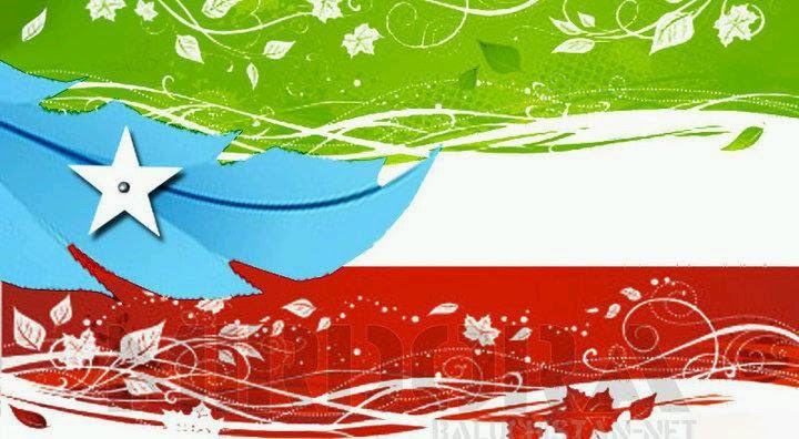 balochistan flag - photo #14