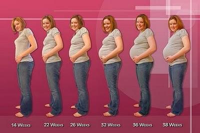Sedikit Informasi Pada Saat Usia Kehamilan 7 Bulan