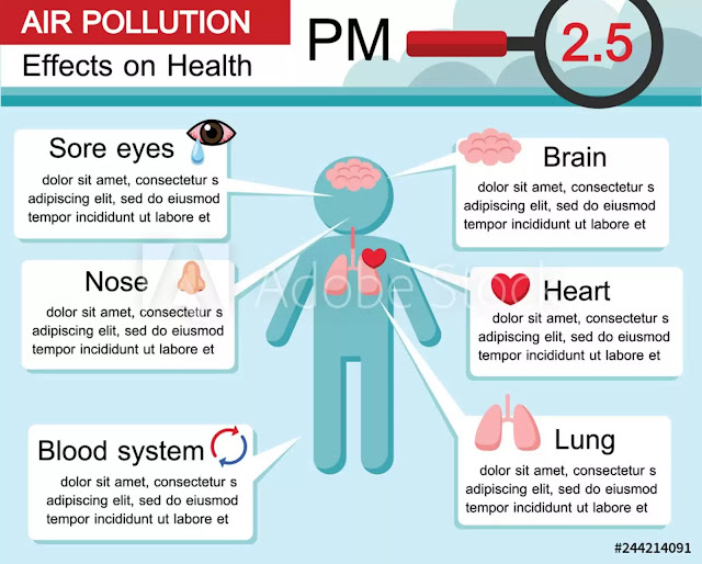 Air pollution,Facts