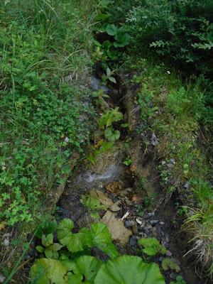林道にできた深い溝