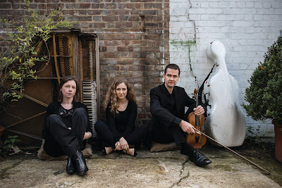 Fidelio Trio - photo Hugo Glendinning