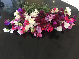 Sweet peas on the kitchen counter
