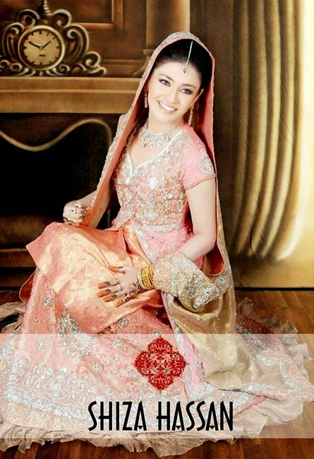 Shiza Hassan Formal and Embroidered Dress Collection 2014