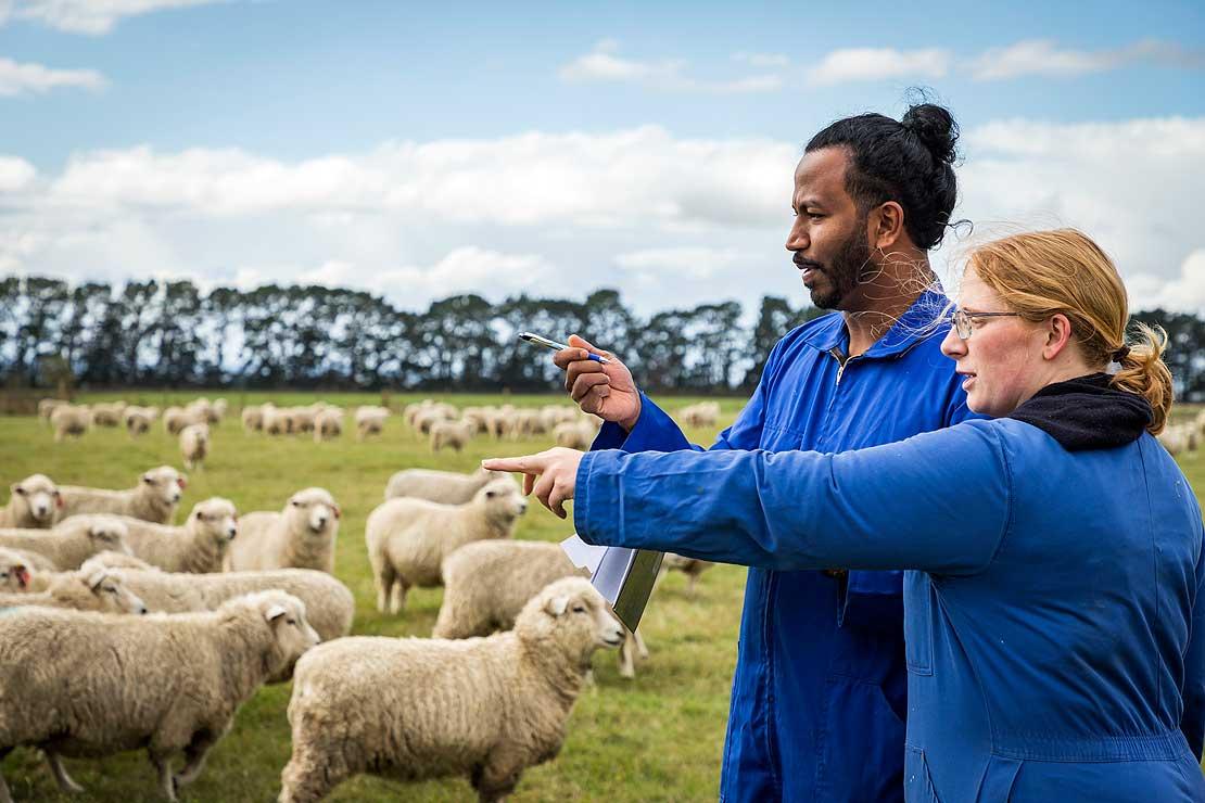 Chuyên ngành công nghệ sản xuất thức ăn chăn nuôi