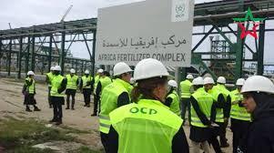 Déposez votre Candidature spontanée à l'Office Chérifien des Phosphates (OCP)