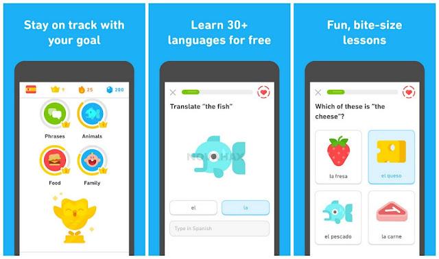 Duolingo premium full APK