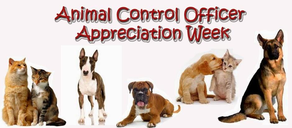 Kelleys Dog Blog National ACO Appreciation Week