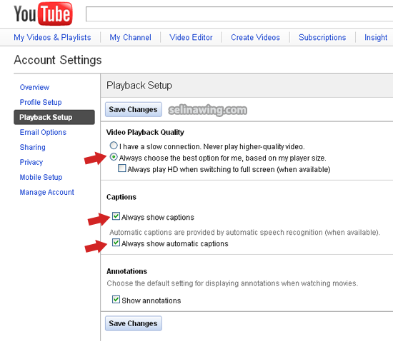 how to get the subtitle script from youtube