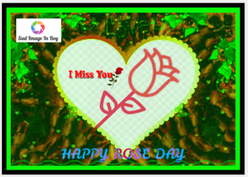 Rose Day Images, Pictures, Photos And Greeting For WhatsApp