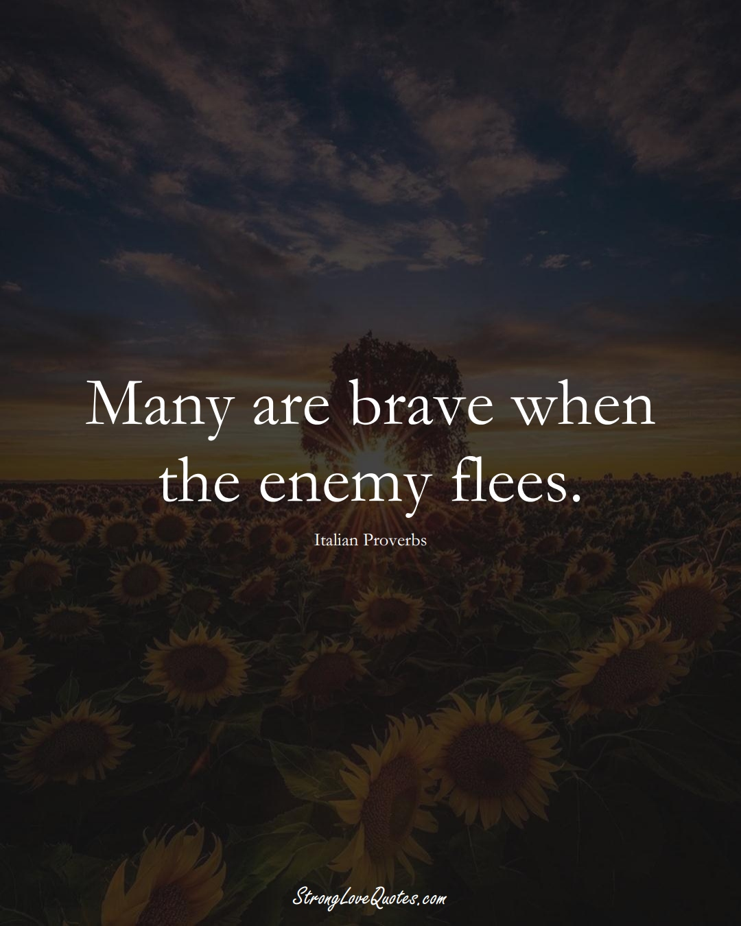 Many are brave when the enemy flees. (Italian Sayings);  #EuropeanSayings
