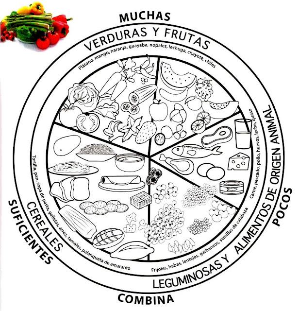 Plato Saludable Para Colorear Imagui