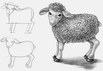 как нарисовать овцу карандашом поэтапно