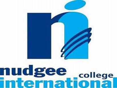 Nudgee International