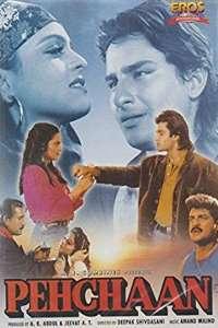 Download Pehchaan (1993) Hindi Movie 720p WEB-DL 1GB