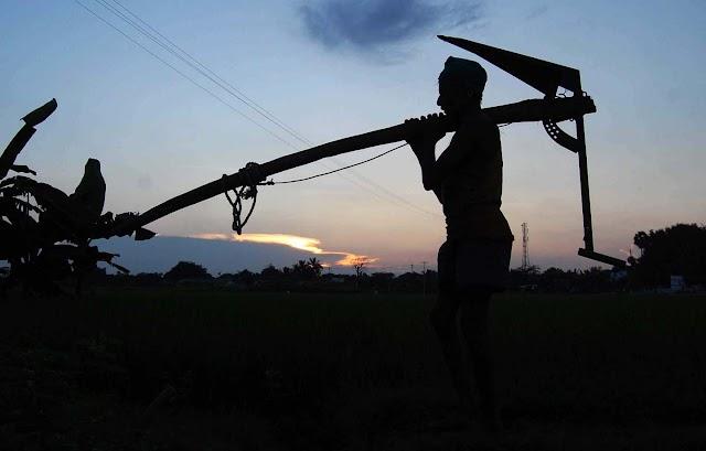 शेतकऱ्याची भूमिका ह्या विश्वासाठी नेमकी काय आहे कष्टाळू शेतकरी कष्ट आणि शेतकऱ्याचा (shrimati)