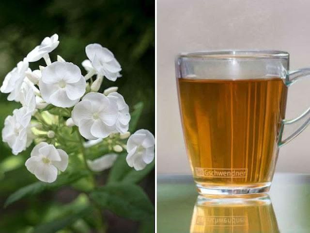 Beneficios del té de valeriana