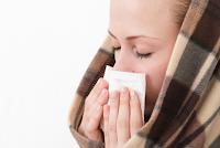 Pengertian Flu Babi, Asal Mula, Penyebab, Gejala, Vaksinasi, dan Pencegahannya