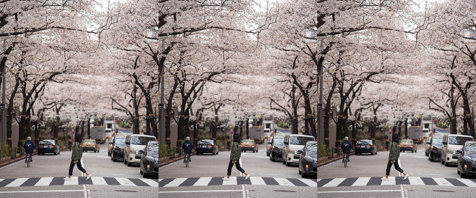 Cherry blossom underpass, cherry blossom spots in Roppongi, Spring in Tokyo, best spots to view cherry blossoms, Tokyo based style blogger FOREVERVANNY