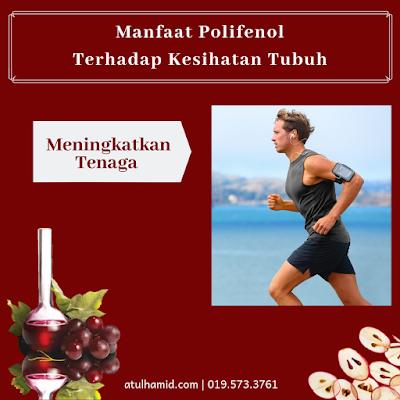 Manfaat Polifenol Terhadap Kesihatan Tubuh