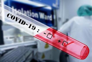 Panduan Mudah Memahami Arti Pandemi,Endemi ,Epidemi dan Wabah Suatu Penyakit