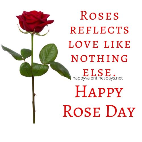 happy-rose-day-wishes-quotes