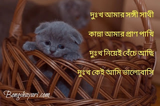 sad sms bangla, bangla sad sms, bengali sad sms for girlfriend, sad love bangla sms, sad love sms in bangla