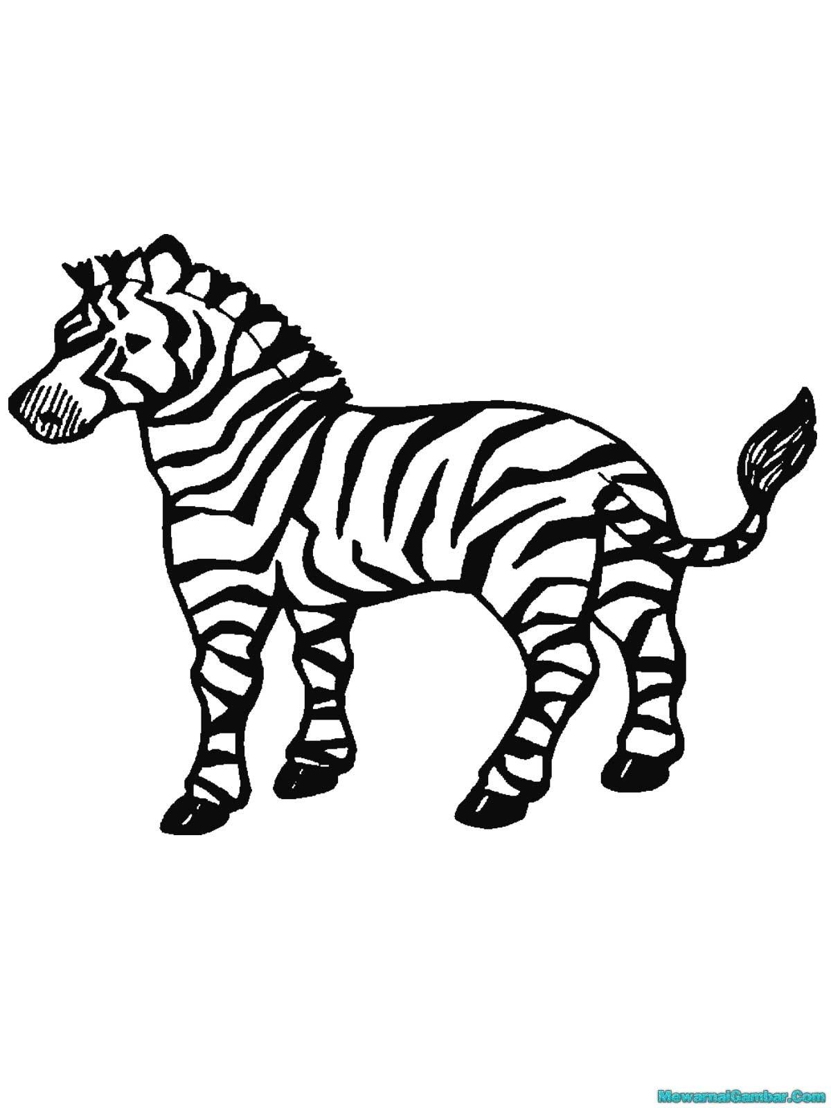 Buku Mewarnai 20 Gambar Zebra Mewarnai Gambar