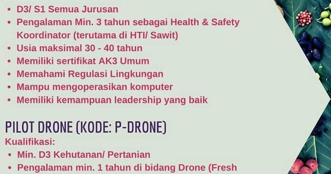 Lowongan Kerja Smk D3 S1 Terbaru Juni 2020 Di Pt Surya Hutani Jaya Lowongan Kerja Medan Terbaru Tahun 2021