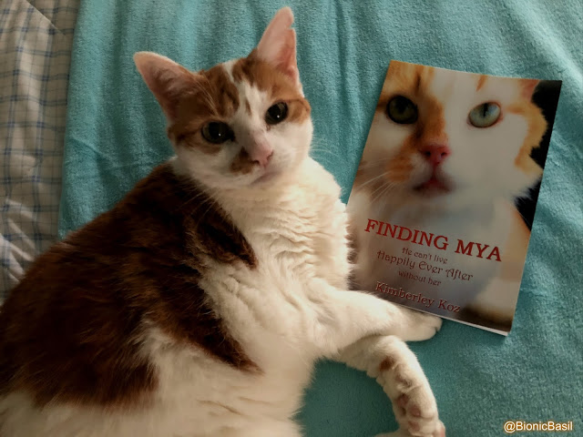 FINDING MYA Book Review by AMBER